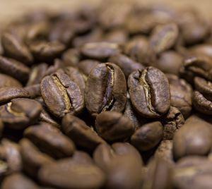 Obrazek Guatemala SHB Finca Bremen Organic | Arabica | Kawa ziarnista