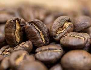 Obrazek Kenia AB Plus Organic | Arabica | Kawa ziarnista